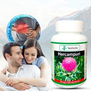 Hercampuri, Hepatoprotector